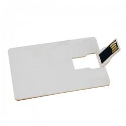 Usb Flash Card RT-UK08