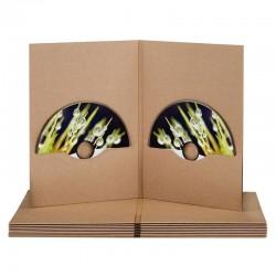 DVDFile 2 Discs